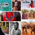 2014 Top Photos: Wildlife, People, Food