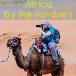 Africa by the Numbers