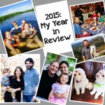 2015 – My Year in Review