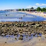 CT Day Trip: Milford & Silver Sands Park